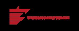 holding force logo